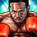 Boxer bei Knockout Wins